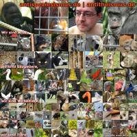 Tiere verschiedener Arten.